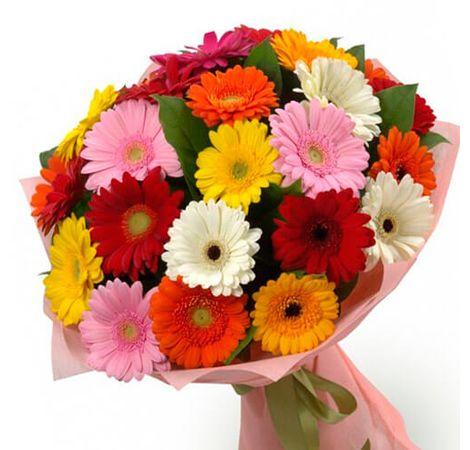 Микс из 25 гербер. Superflowers.com.ua