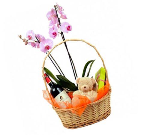Орхидея в корзине с сюрпризом. Superflowers.com.ua