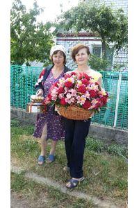 Доставка корзины альстромерий Киевская область