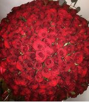 201 роза Ницца