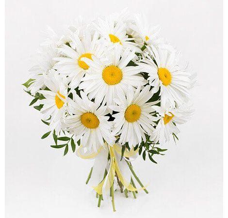 """Букет ромашек """"Поцелуй лета"""". Superflowers.com.ua"""