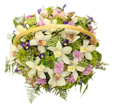 "Корзина орхидей ""Императрица"". Superflowers.com.ua"